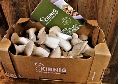 kirnig-gallerie-5
